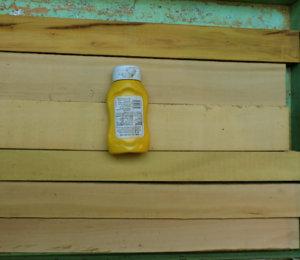 yellow wood.jpg