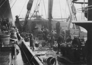 unloading-catch-from-trawlers.jpg