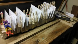 19 Fluit, Zeehaen align paper copy.jpg