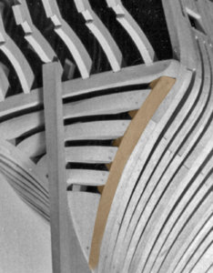 fashion timber2.jpg