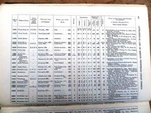 Mercantile Navy List 1923 (Large).JPG