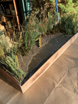 Marsh Board 10.9 A Planted.jpg