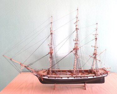Fig 81 model MG_1795.jpg