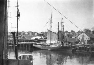 18651.jpg