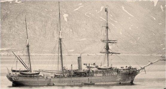 2.-Bear-1884.jpg