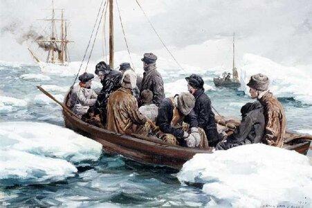 6.-BEAR-Saving-Whalers.jpg