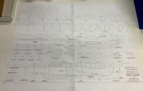 F404C092-827A-4D5A-BD31-2FCE21F5B395.jpeg