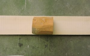 boxwood 1.jpg