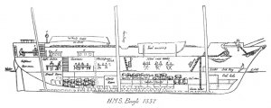 HMS_Beagle_1832_longitudinal_section_larger.jpg