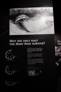mary-rose_25170264618_o.jpg