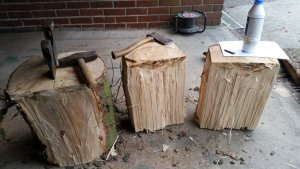 wooddrying (2).jpg