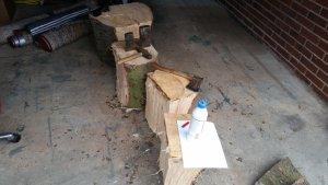 wooddrying (3).jpg
